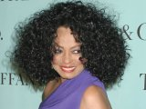 Singer Diana Ross announces that she will embark on a summer tour.