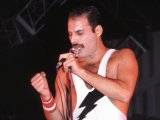 The film chronicling the life of Queen singer Freddie Mercury is scheduled for an autumn 2012 release.