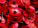 BBC presenters are criticised for wearing Royal British Legion poppies before fundraising begins.