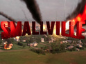 A Smallville star drops hints about their role in the forthcoming series finale.