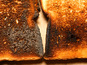 Burnt toast closes Kings Cross Station