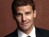 Agent Seeley Booth from Bones
