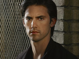 Milo Ventimiglia from Heroes