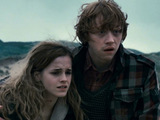 Hermione and Ron from Harry Potter And The Deathly Hallows