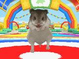 Petz Hamster Superstar