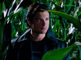 Smallville SE10 EO01: Tom Welling as Clark Kent
