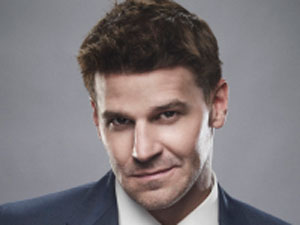 David Boreanaz as Seeley Booth in Bones