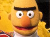Bert from Sesame Street