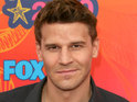 David Boreanaz says that he'd like to play an American cowboy in Downton Abbey.