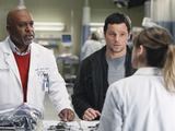 Grey&#39;s Anatomy S07E15 &#39;Golden Hour&#39;: Meredith and Richard