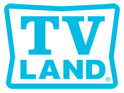 TV Land confirms that it has handed series orders to Happily Divorced and The Exes.