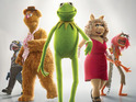 Enter Digital Spy's competition to win a copy of The Muppets on Green-ray.