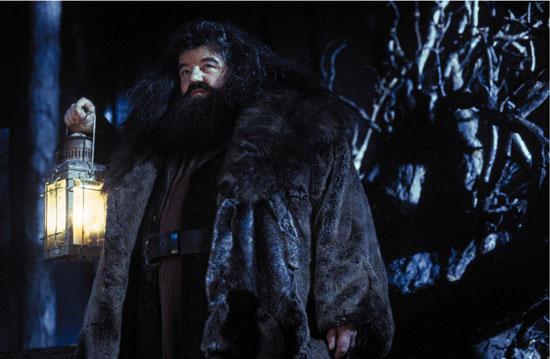 Hagrid's pets