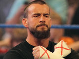WWE wrestler CM Punk