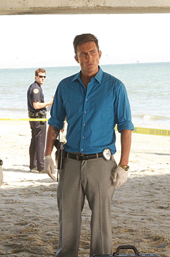 Desmond Harrington as Joey Quinn