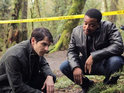 NBC requests two additional scripts for hit paranormal drama Grimm.