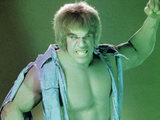 Lou Ferrigno as The Incredible Hulk