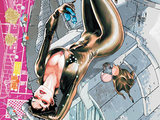 The New 52 - Catwoman