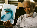 Harry Connick, Jr. and Morgan Freeman return for family film follow-up.