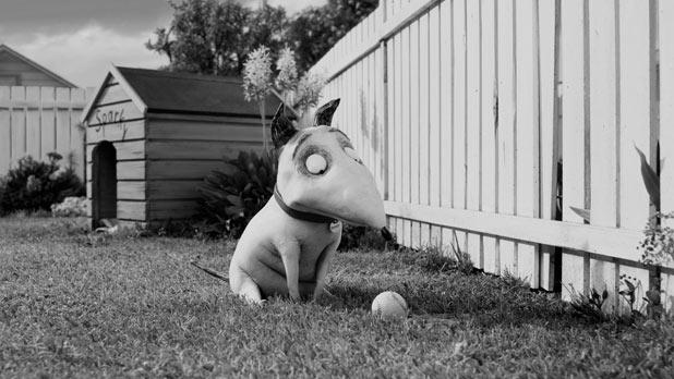 Tim Burton's 'Frankenweenie': Sparky still