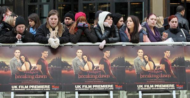 <em>Twilight</em> fans