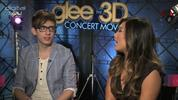 Glee stars on dream cameos