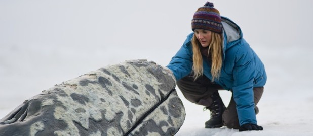 Big Miracle, Drew Barrymore