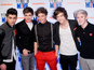"Singer says the boyband should just be described as ""the next terrific band""."