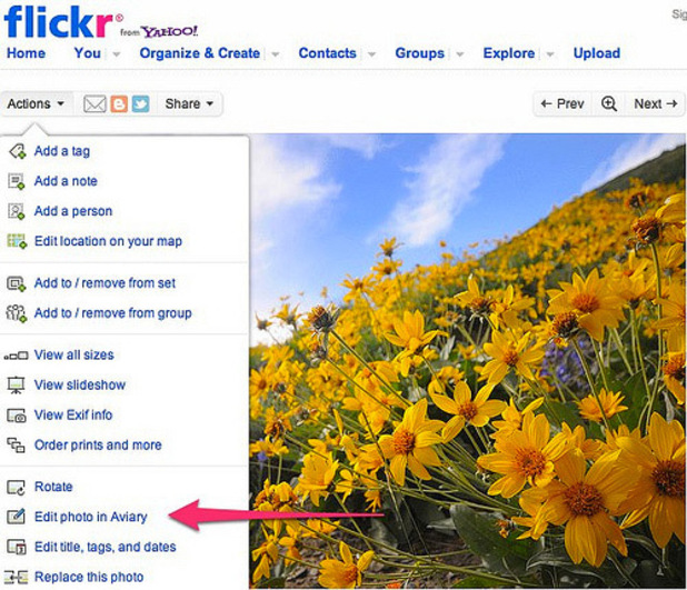 Flickr Editor Still