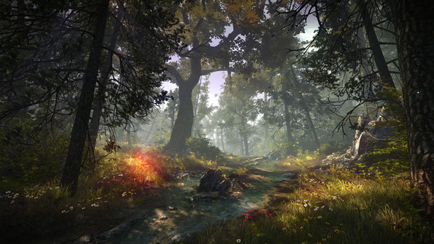 'The Witcher 2: Assassin's of Kings' screenshot