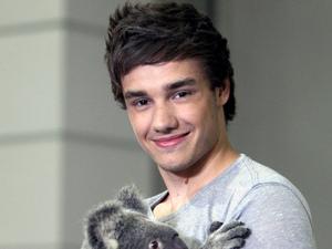 Liam Payne, koala