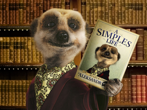 Meerkat Aleksandr Orlov with his book A Simples Life