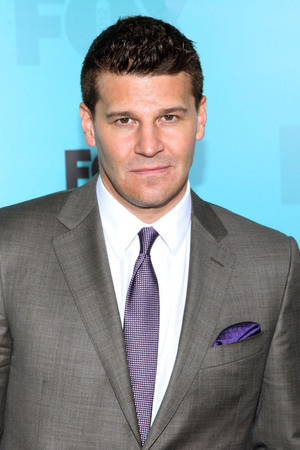 David Boreanaz 2012 Fox  Upfront Presentation held at the Wollman Rink - Arrivals New York City, USA, 14.05.12 Mandatory Credit: Andres Otero/ WENN.com