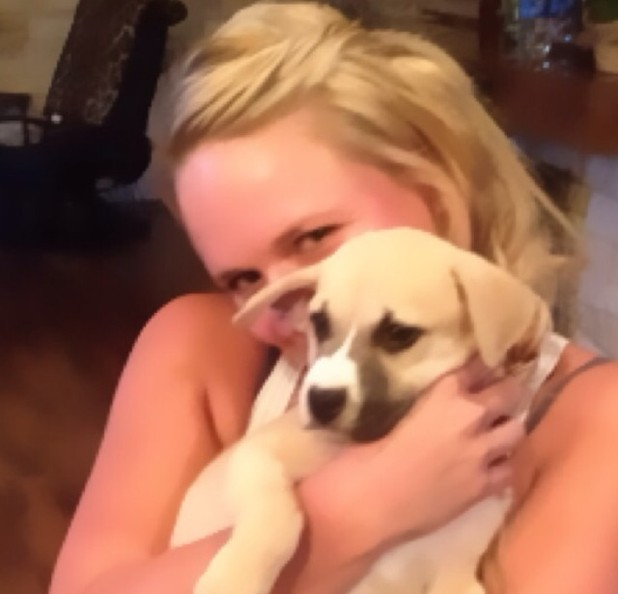 Miranda Lambert rescues dog and posts image on Twitter