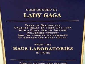 Lady Gaga Fame perfume ingredients