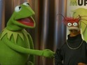 Kermit and Pepe talk to Digital Spy about their movie comeback.