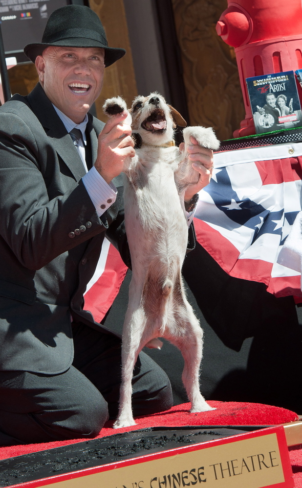 Uggie, the beloved Jack Russell terrier from 'The Artist' attends the pawprint ceremony at Grauman's Chinese Theatre
