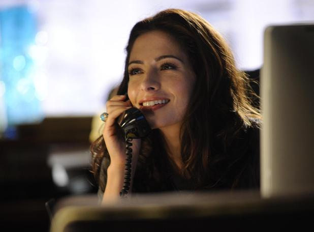 'Fairly Legal' Sarah Shahi