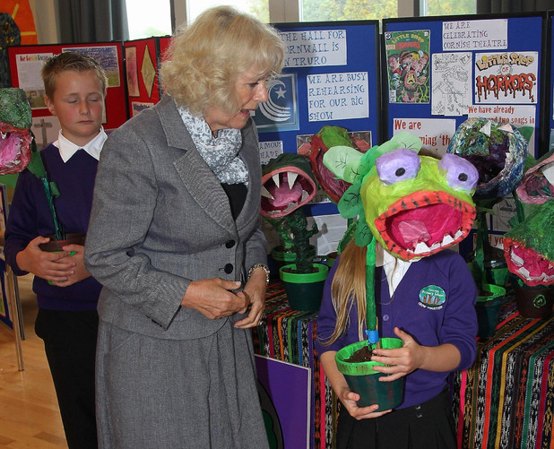 Duchess of Cornwall, Duchess of Cornwall are on a three day trip to Cornwall and the Isles of Scilly. The Prince of Wales is celebrating 60 years as the Duke of Cornwall. The Duchess of Cornwall meets Rhyanan Atkinson, 11, (right) and Joshua Gilbert, 11, (far left) from Pencoys Primary School as they show her their 'Little Shop of Horrors' Project in Truro, England.