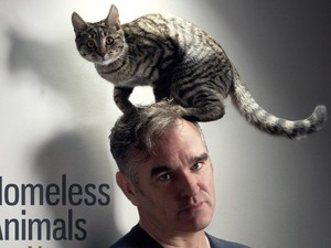 Morrissey with a cat on his head, for PETA