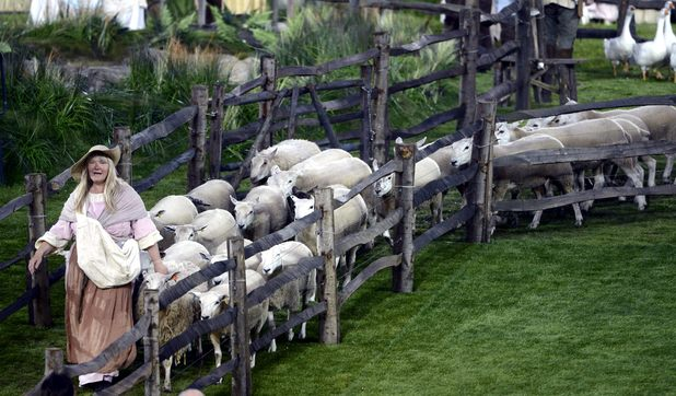 Lambs in ceremony