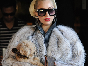 Lady Gaga carries a puppy as she leaves her hotel in Sofia where she is for the first gig of her European tour Sofia, Bulgaria - 13.08.12 **Not for publication in Spain. Available for publication in the rest of the world** Credit: WENN.com