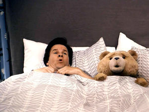 In bed with TED.  Mark Walhberg