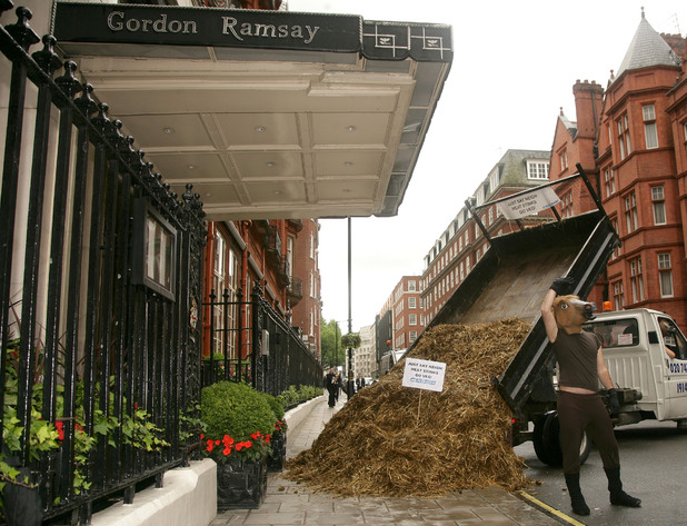 Gordon Ramsey, at Claridges restaurant,  lorry load of horse manure was dumped outside the Gordon Ramsay at Claridges restaurant today in a PETA Europe protest against the use of horse meat in a Ramsay in one of his recipes