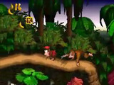 &#39;Donkey Kong Country&#39; screenshot