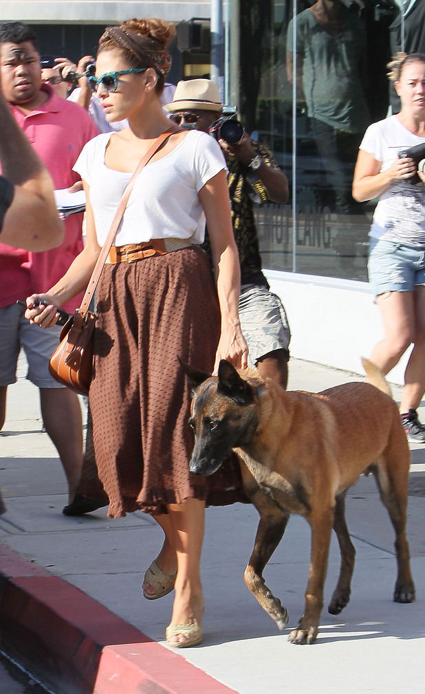 Eva Mendes leaving after a fitting at fashion stylist Rachel Zoe's office with her Belgian Malinois dog called Hugo.Los Angeles, California