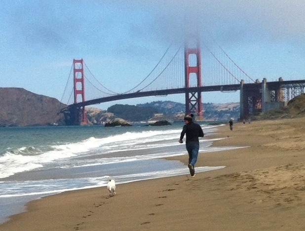 The Bachelor star Ben Flajnik walks his dog