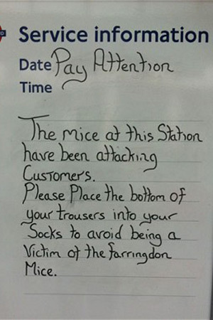 Prank Farringdon mice warning sign