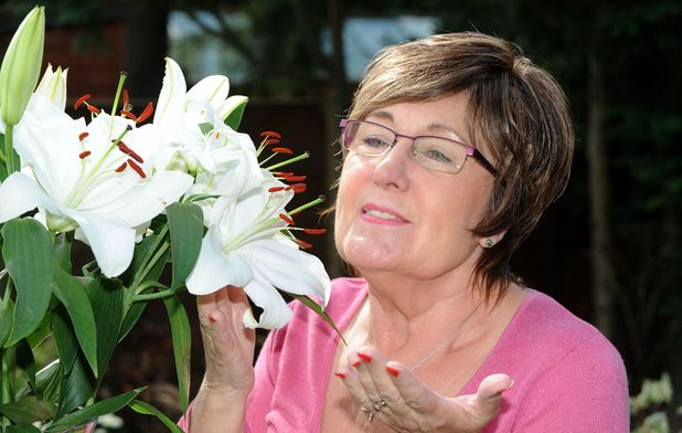 Pioneering surgery restores June Blythe's sense of smell and taste after 37 years