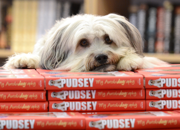 Pudsey, Britain's Got Talent winning dog Pudsey launches his 'Autobidography' at Foyles, Charing Cross Road, London